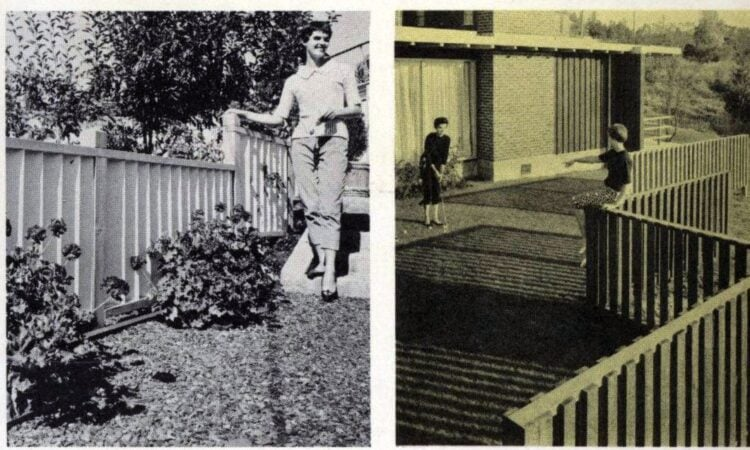 Vintage backyard wooden fencing designs from 1960