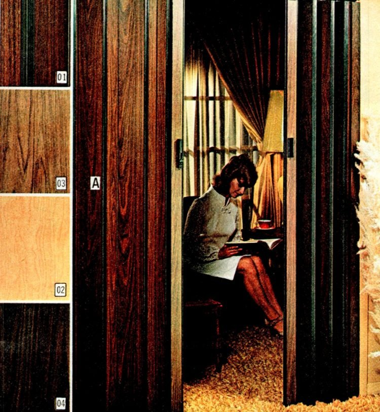 Vintage folding doors from the 70s (3)