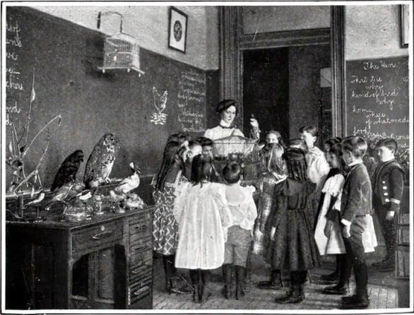 Vintage school classrooms in 1899 (4)