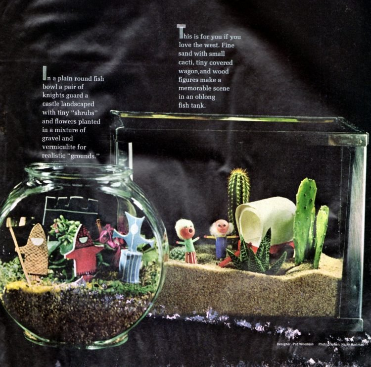 Vintage terrariums from 1966 (2)