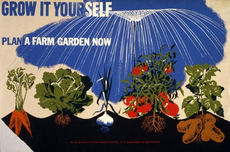 WWII Victory gardens - Grow it yourself Plan a farm garden now