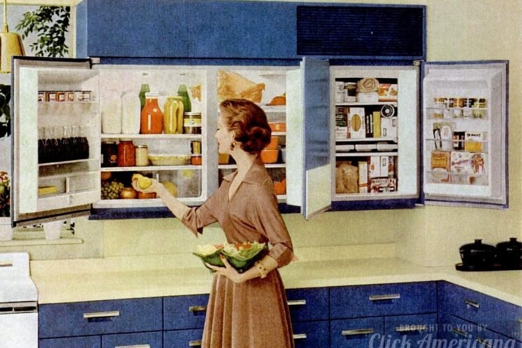 Forget kitchen cabinets - install a wall-mounted refrigerator! (Yes