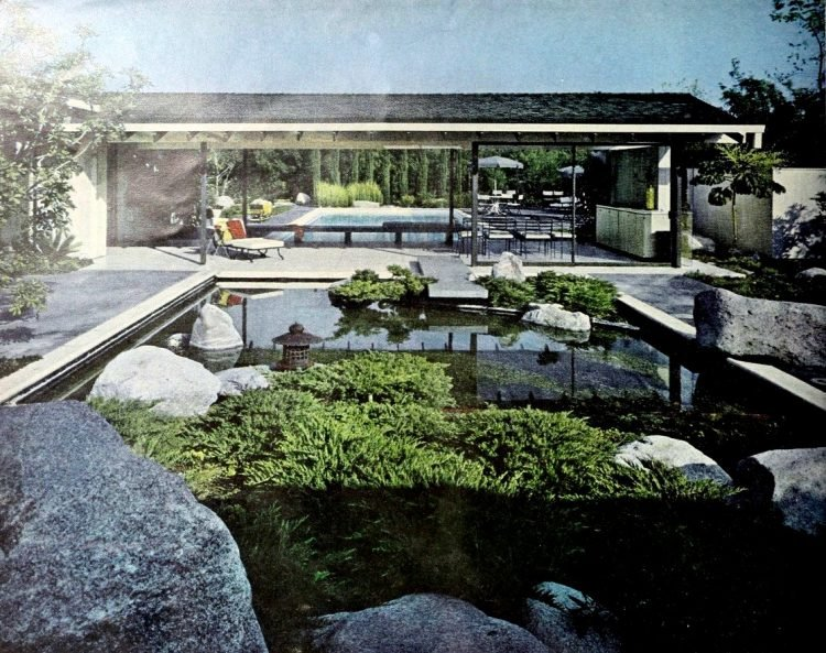 Water garden in foreground, swimming pool in the back