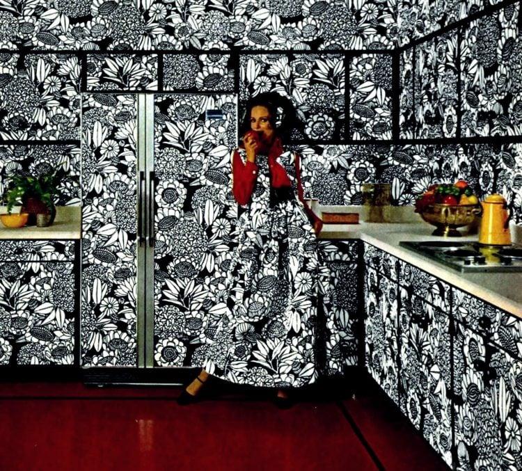 Wild black and white kitchen and appliances 1968