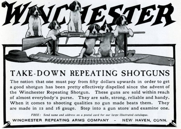 Winchester Take-down repeating shotguns 1905