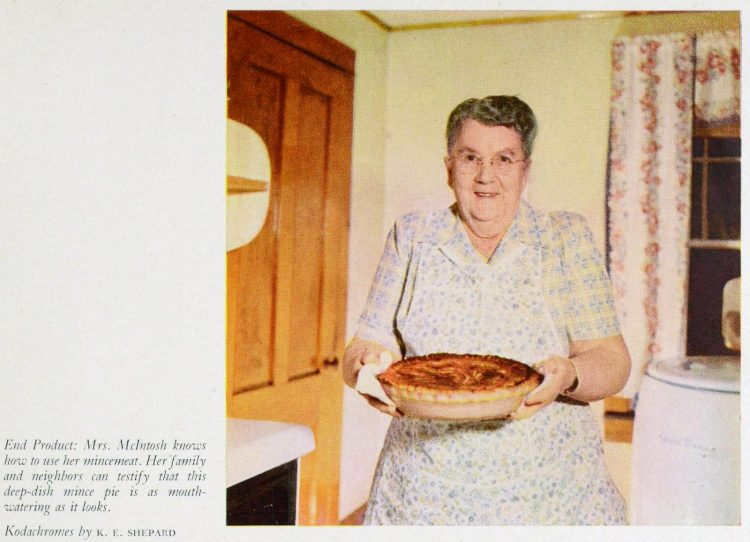 Woman in 1950 with a fresh mince pie