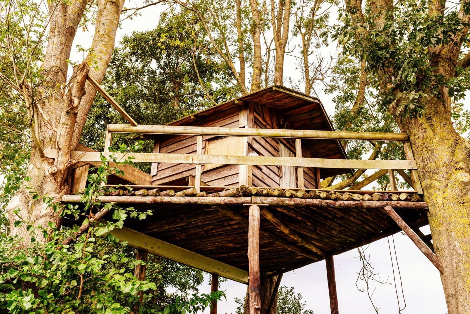 Wooden tree house built on a platform between two trees