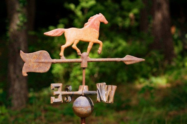 Antique weathervanes: 50+ examples of old-fashioned decorative & functional rooftop art