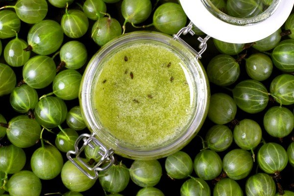 6 classic gooseberry preserve recipes
