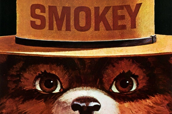 The story of Smokey the Bear, and how only YOU could prevent forest fires