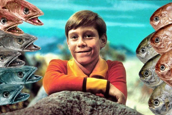 Fish heads, fish heads: The bizarre cult hit song co-written by a TV star