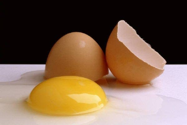 8 different ways to prepare eggs (1912)