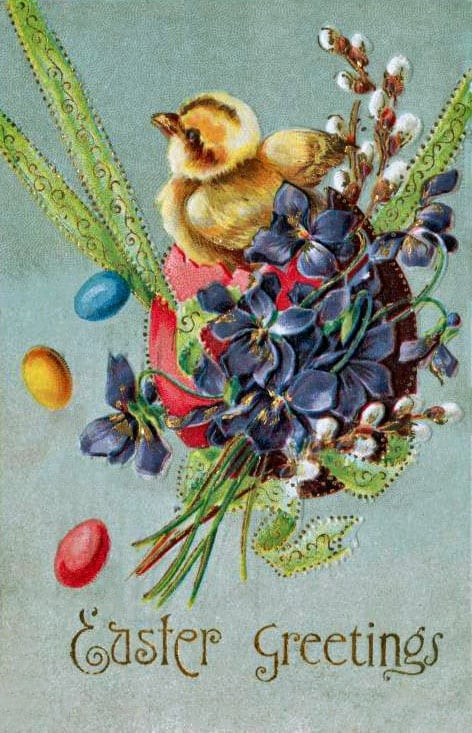 Easter greetings postcard with a chick (1909)