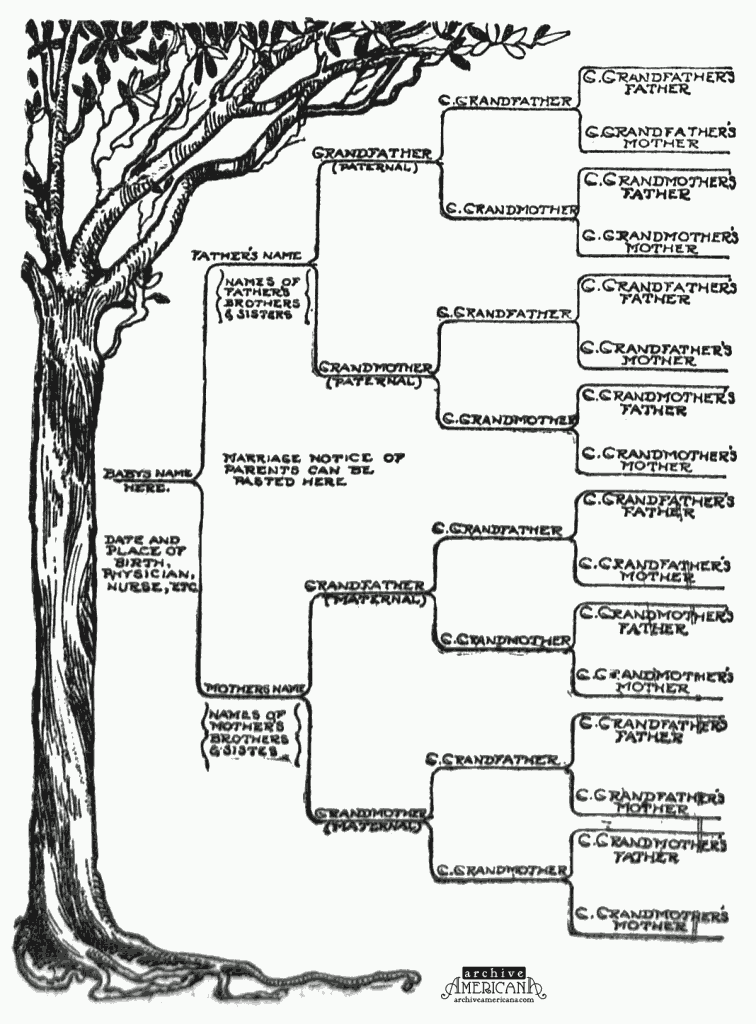 Family tree template family tree template one parent for Ancestry book templates