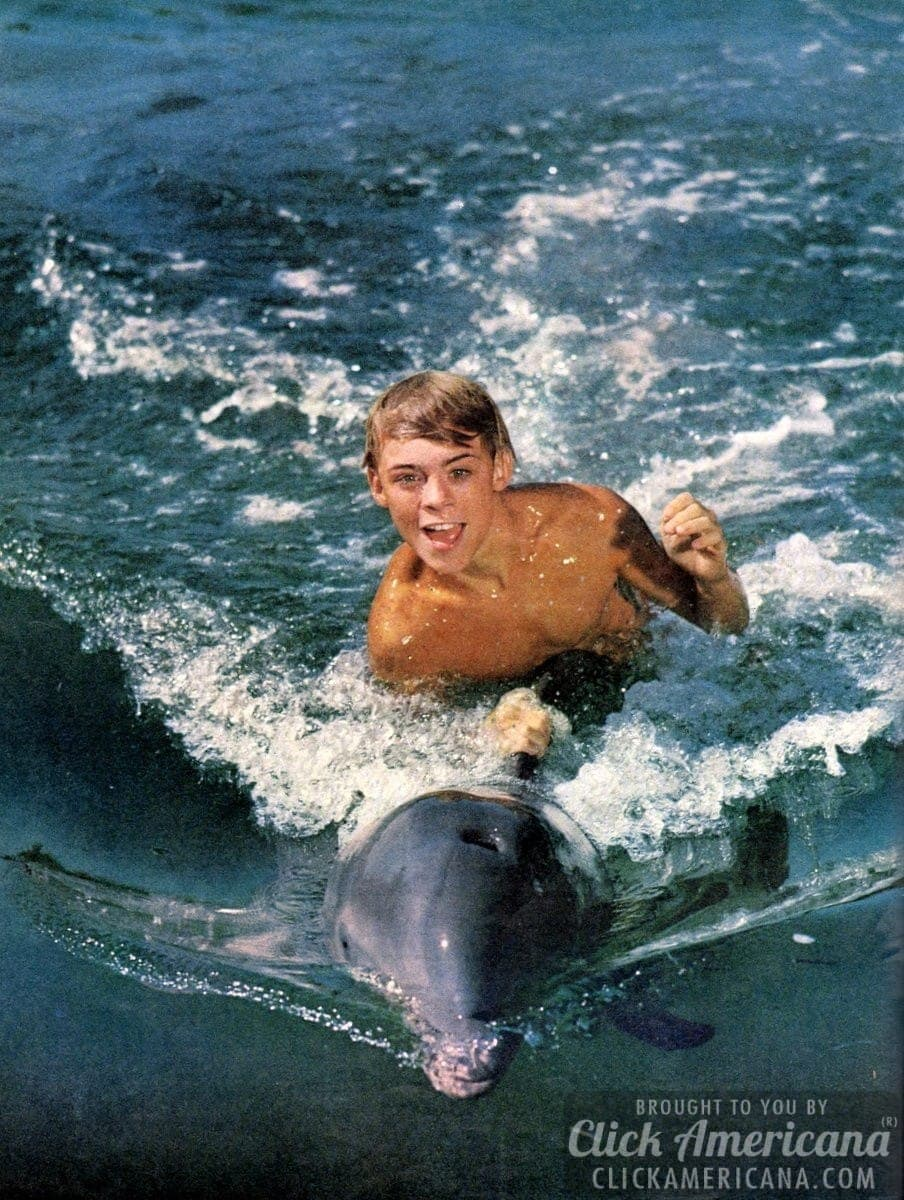 My pal Flipper, the dolphin king of the sea (1963)