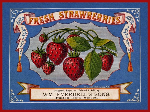 Strawberry shortcake & berry pies (1915)