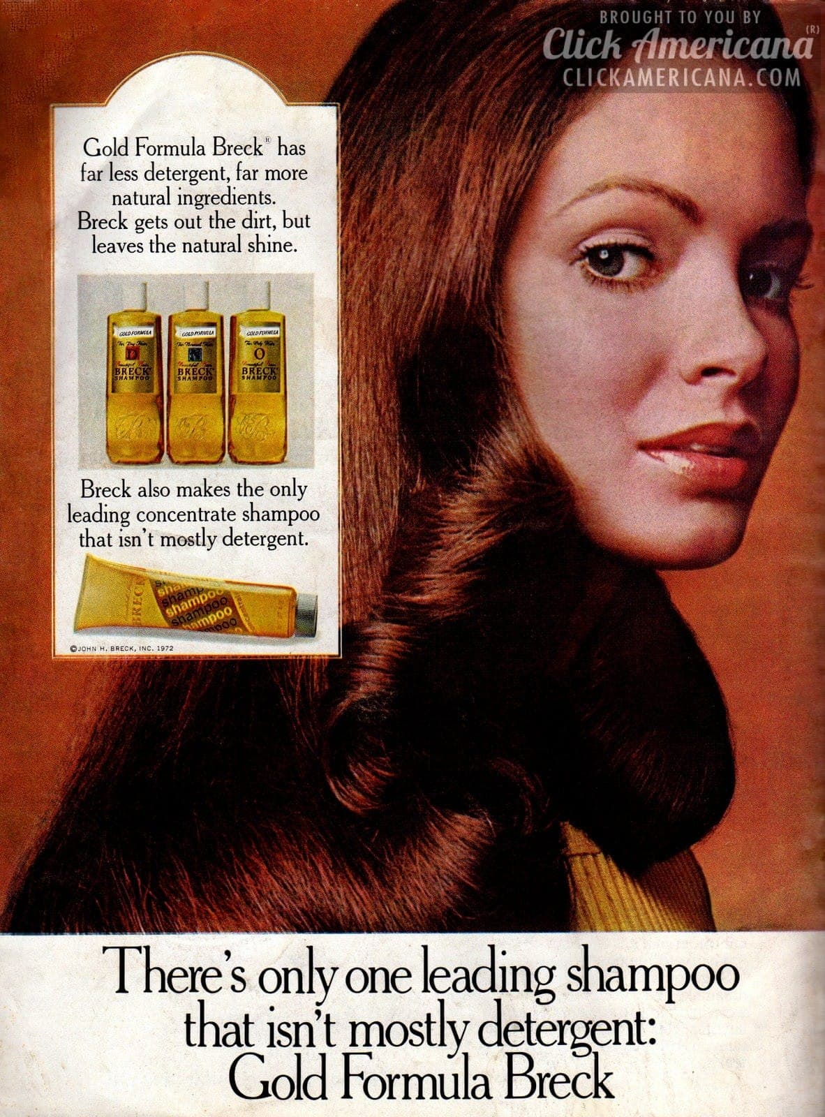Charlie S Angel Jaclyn Smith For Breck Shampoo 1974