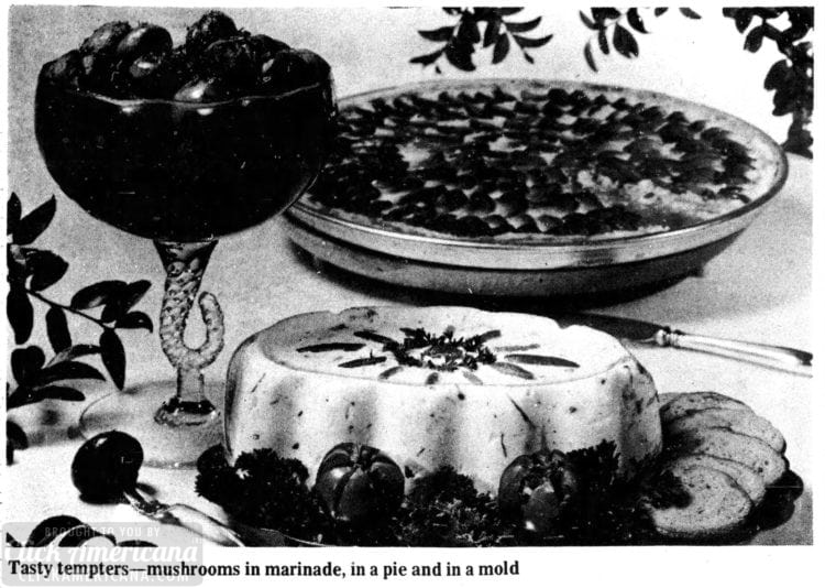 magnificent mushroom appetizer recipes - 1973