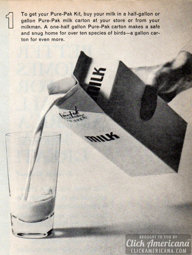 milk-carton-birdhouse-vintage-craft-how-to-march-1964 (2)