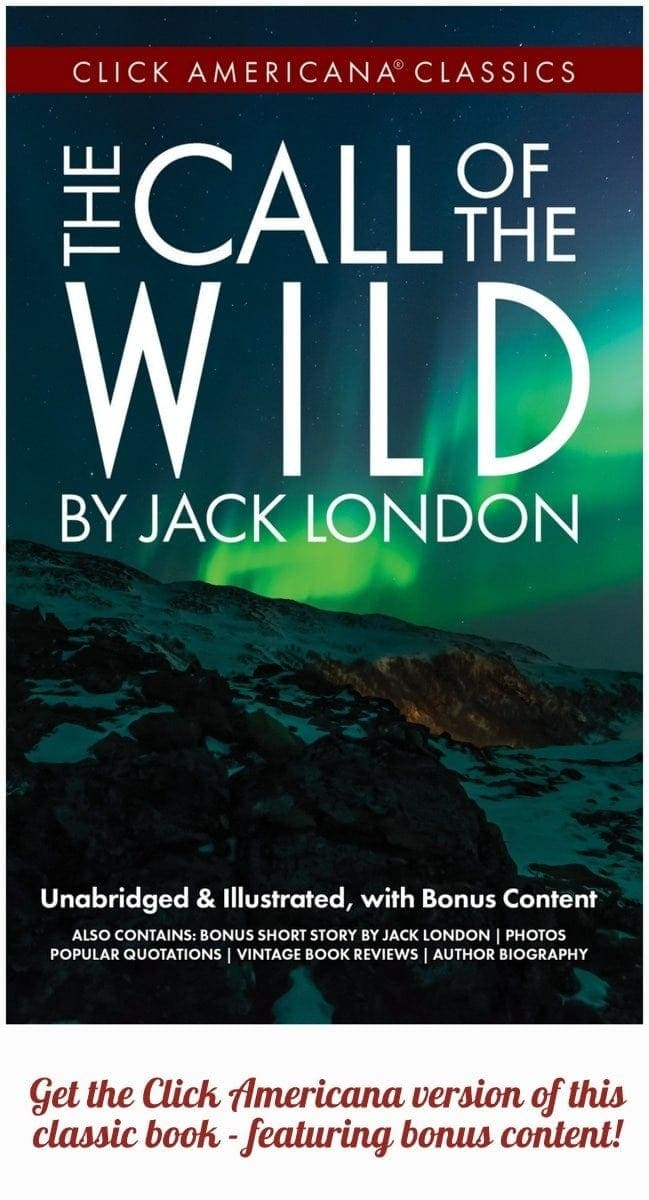 New version of the book Call of the Wild by Jack London