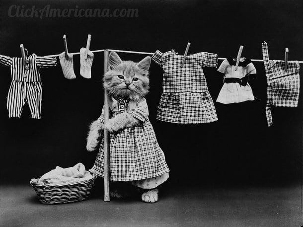 Kittens in silly storybook poses (1914-15)