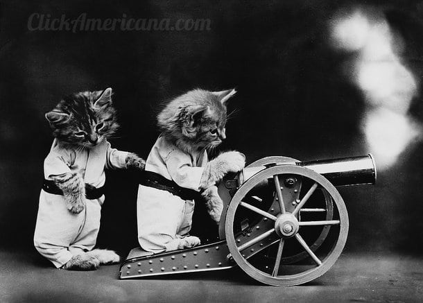 silly-vintage-cats-c1914 (5)