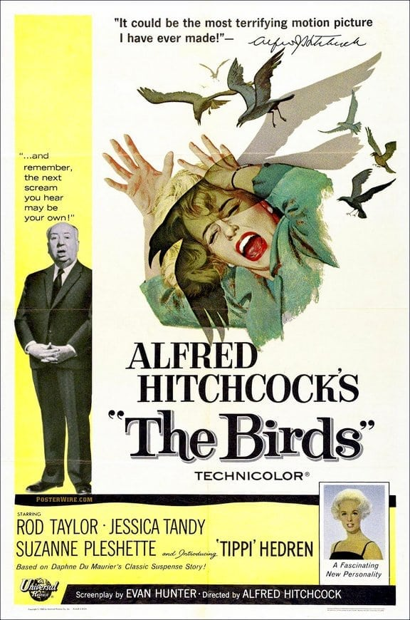 Hitchcock's The Birds set
