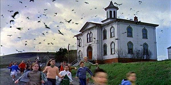 the-birds-scene