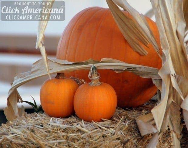 three-pumpkins-cooking-recipe