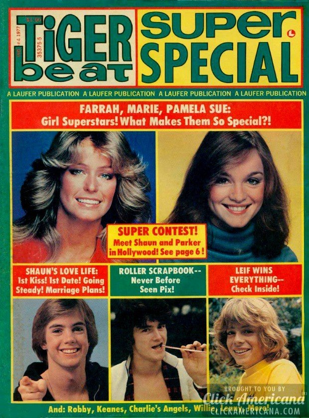 Tiger Beat Super Special (1977)